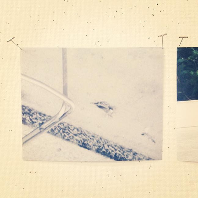 current work in progress - Untitled (2013)